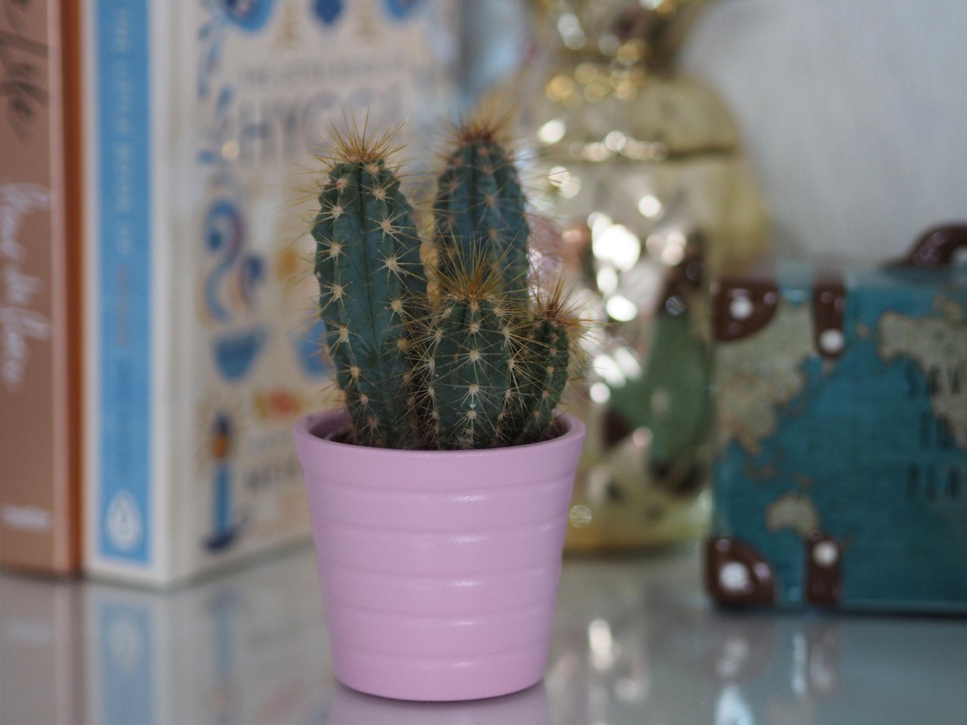 Inspiration for Gifts for Her, Make-Up Brushes - Rachel Nicole UK Blogger
