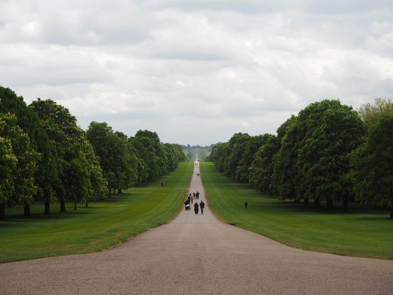 The Long Walk, Windsor - Rachel Nicole UK Travel Blogger