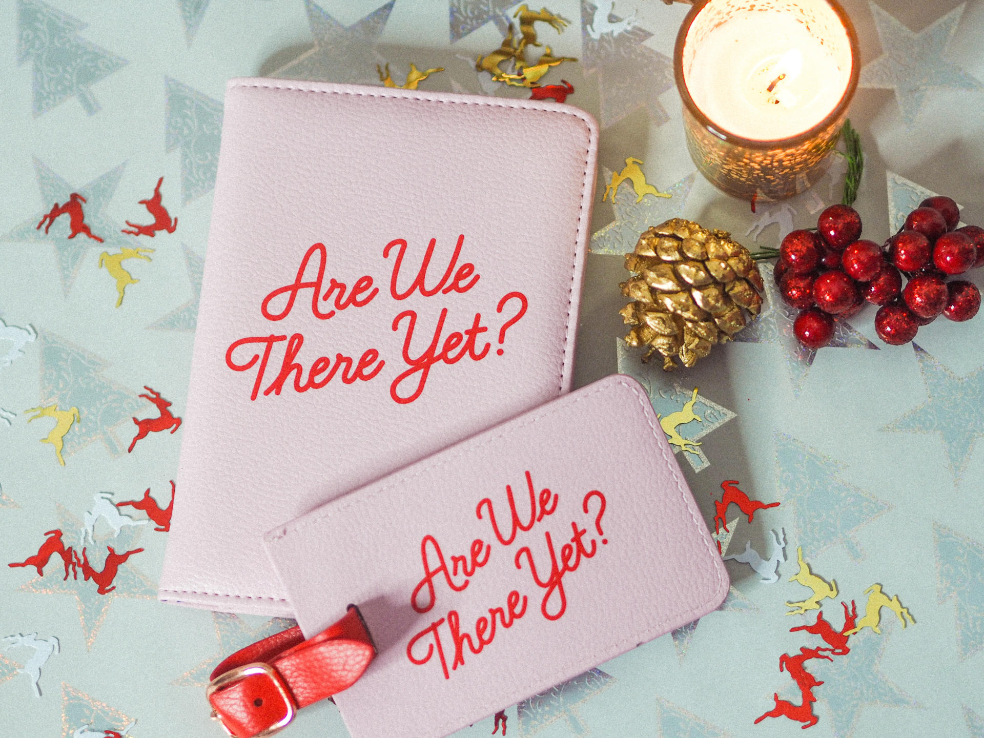 Win a Passport Holder & Luggage Tag from Prezzybox - Rachel Nicole UK Blogger