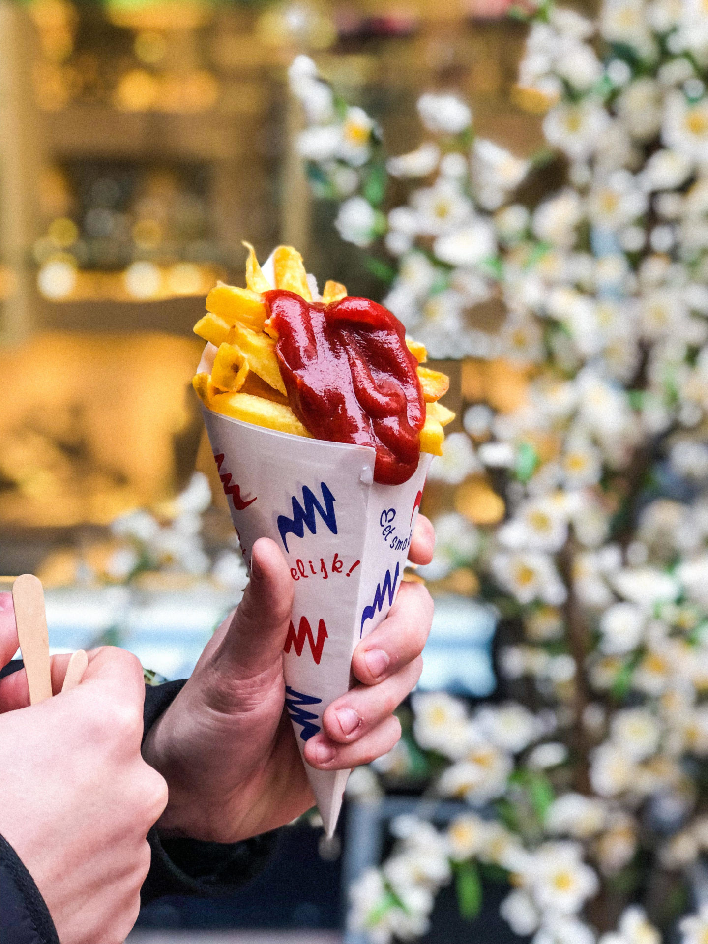 The ULTIMATE Guide to Visiting Amsterdam, Dutch Frites - Rachel Nicole UK Blogger