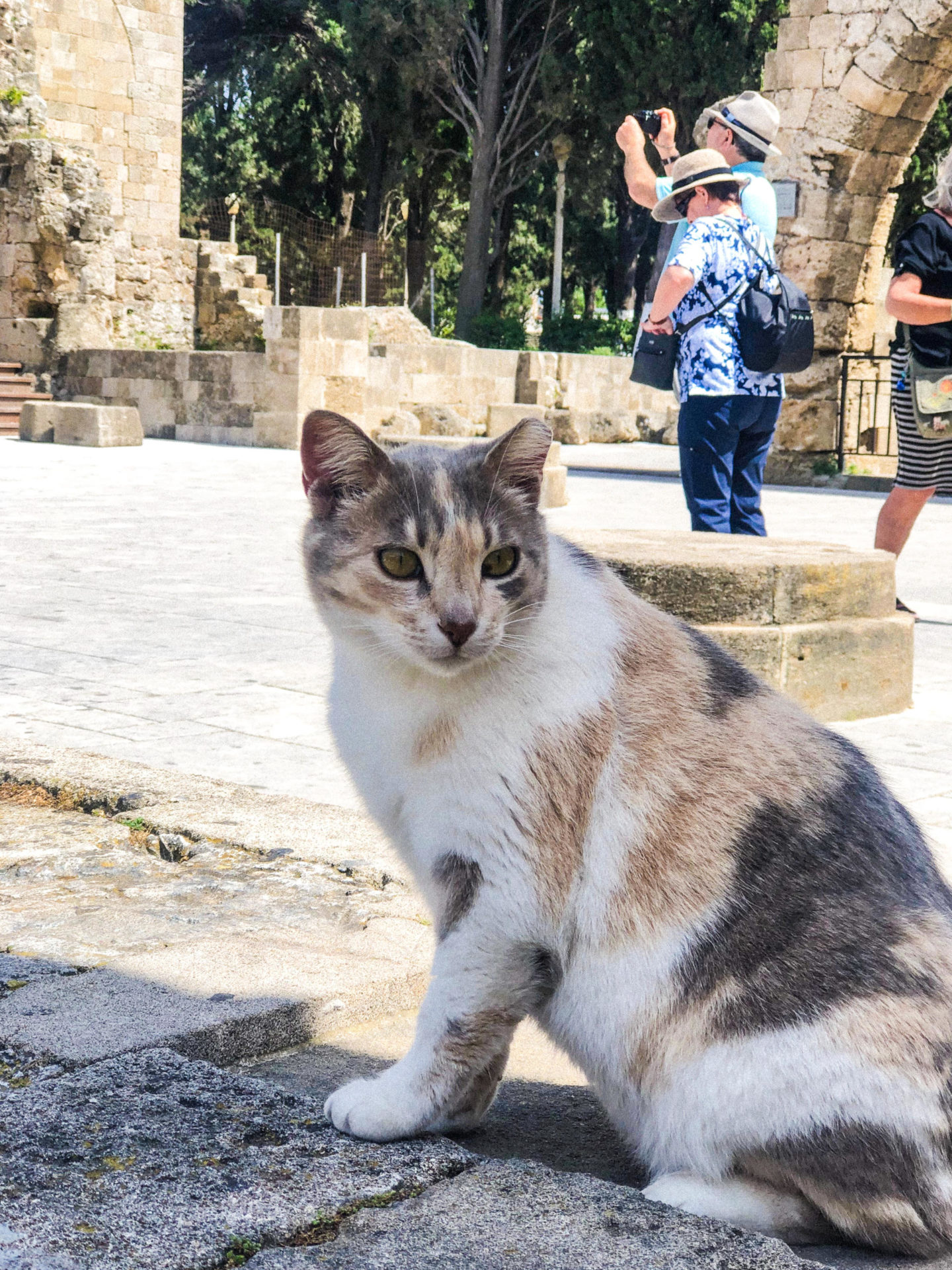 Exploring Rhodes, Greece with Marco Polo Guides - Rachel Nicole UK Blogger